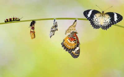 Are You Ready For The Big Leap? The One from Manager to Leader